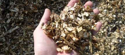 дробилка древесины. без тормозов LS 150/38 C